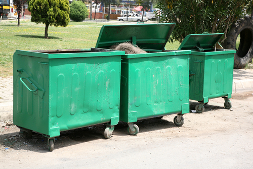 Do you Need Mini Skips for Hire or Bigger Bins for your Adelaide Garbage Removal Initiative? article image by Easy Skips